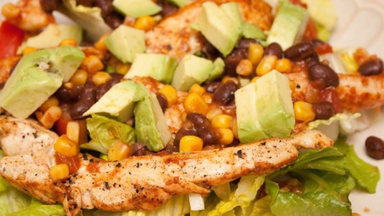 chicken fiesta salad review by spice of life