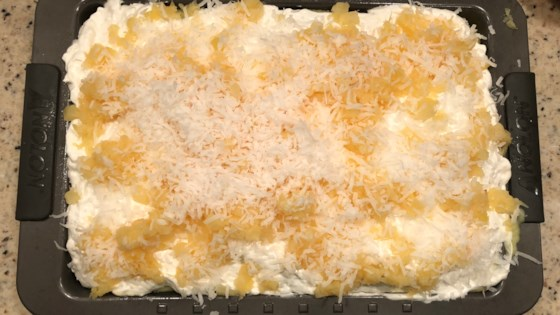 Photo of Pina Colada Cake IV by LDYBOS2