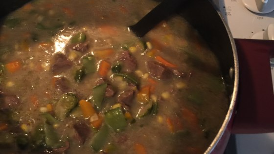 Photo of Yummy Beef or Venison Stew by Andrea McKay
