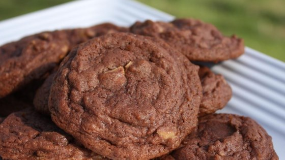 Photo of Chocolate Peanut Butter Pudding Cookies by Ashlee Thomas Sherey