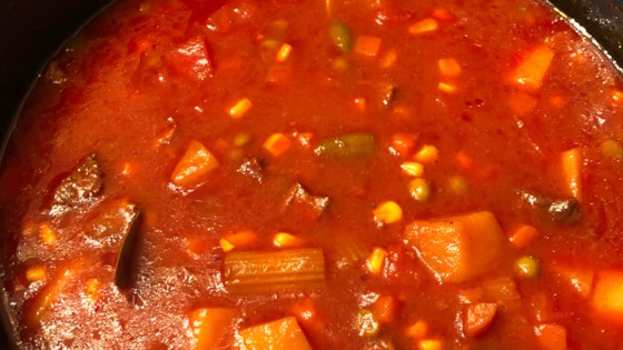 Photo of Homemade Vegetable Beef Soup by renee