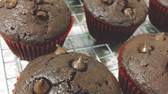 Photo of Moist Chocolate Muffins by LONESTAR1