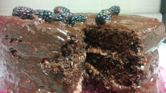 Photo of Chocolate-Raspberry Icing by Jessica Black