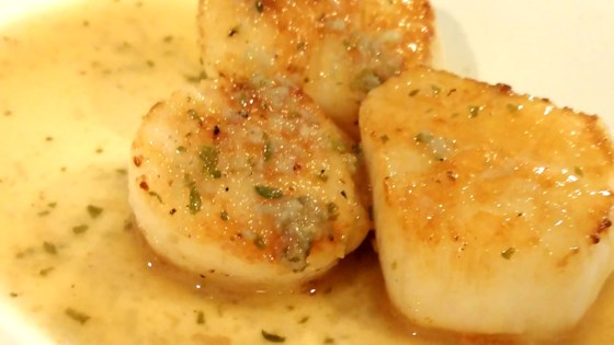 Sous Vide Scallops with Garlic and Lemon Butter Recipe