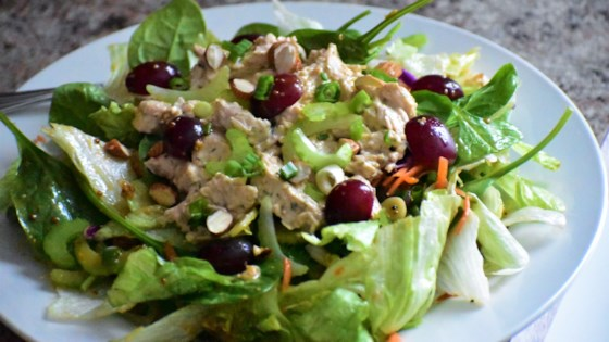 Photo of Chopped Turkey Salad with Grapes by Sher B Garfield