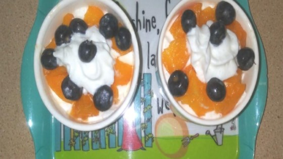 Photo of Blueberry and Apricot Dessert by Melissa