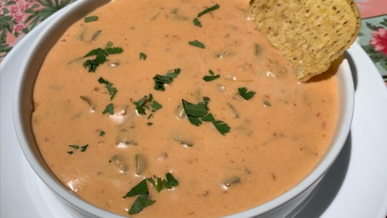 Photo of Warm Chili Cheese Dip by vinolover