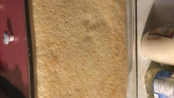 Photo of Hot Milk Sponge Cake III by PRICKLY PEAR
