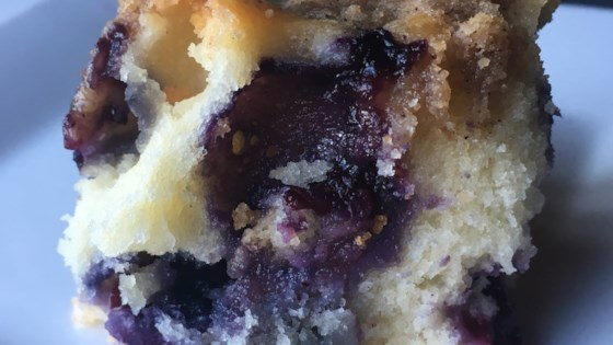 Photo of Blueberry Buckle by JBS BOX
