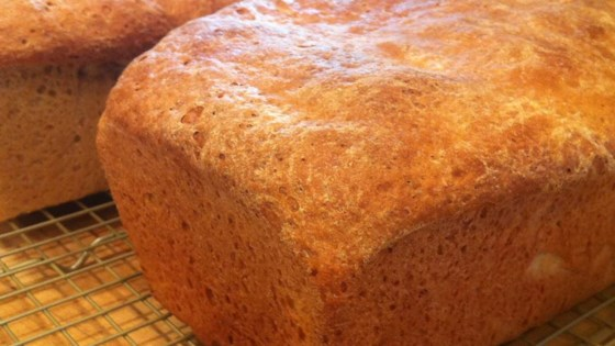Photo of Honey Wheat Bread II by Meghan Monahan