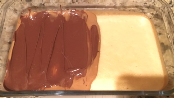 Photo of Peanut Butter Tandycakes by shirleyo