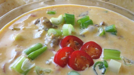 Photo of Sausage Cheese Dip by DLEANN
