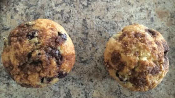 Photo of Saskatoon Berry Oat Muffins by Melanie McClare
