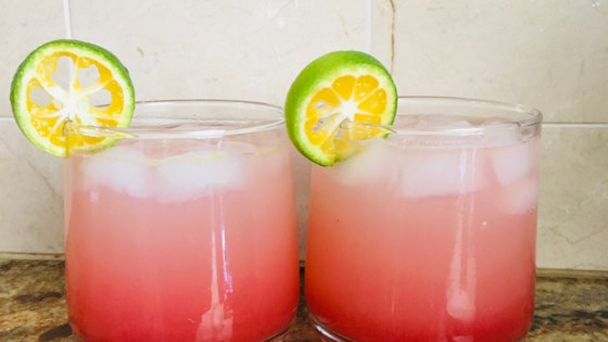 Photo of Raspberry Citrus Mocktail by Slerps and Ada