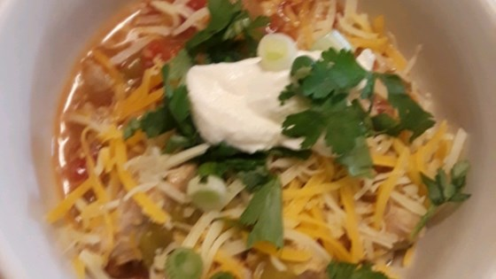 mexican pork and green chile stew review by lori j nonko
