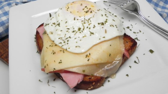 Photo of Strammer Max (German Open-Face Sandwich with Ham, Cheese, and Fried Egg) by Alois