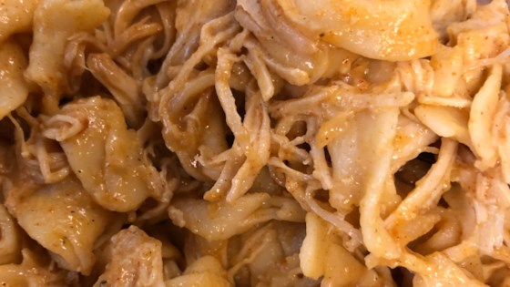 Photo of Instant Pot® Chicken Paprikash with Egg Noodles by Tom G.