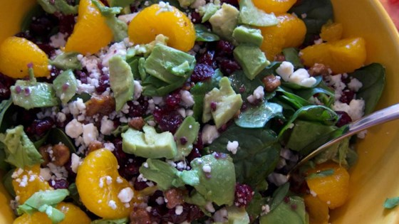 Photo of Cranberry, Glazed Walnut, Orange, Avocado, and Blue Cheese Salad  by Joy Boston