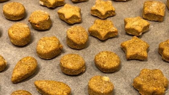 Photo of Peanut Butter and Carrot Dog Treats by jaybu