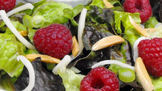 Photo of Raspberry Balsamic Dressing by janiceliv