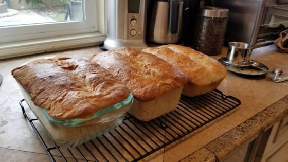 long fermentation sourdough bread review by bren