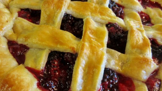 Photo of She's My Blackberry Pie by Allison Fletcher Acosta