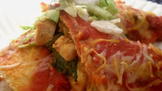 Photo of Turkey Pumpkin Enchiladas by Heathercakes