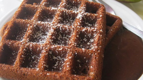 Photo of Gingerbread Waffles with Hot Chocolate Sauce by Michele O'Sullivan