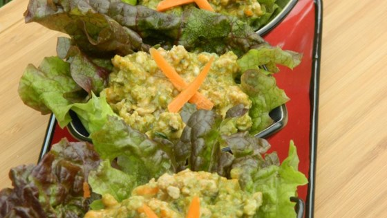 Photo of Thai Curry Pork Lettuce Wraps (Nam Prik Ong) by Elliott