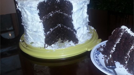 Photo of Chocolate Sauerkraut Cake I by Judy Wilson