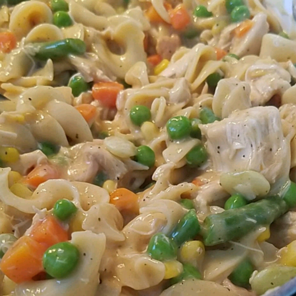 One Dish Chicken Noodles Susan DiMario
