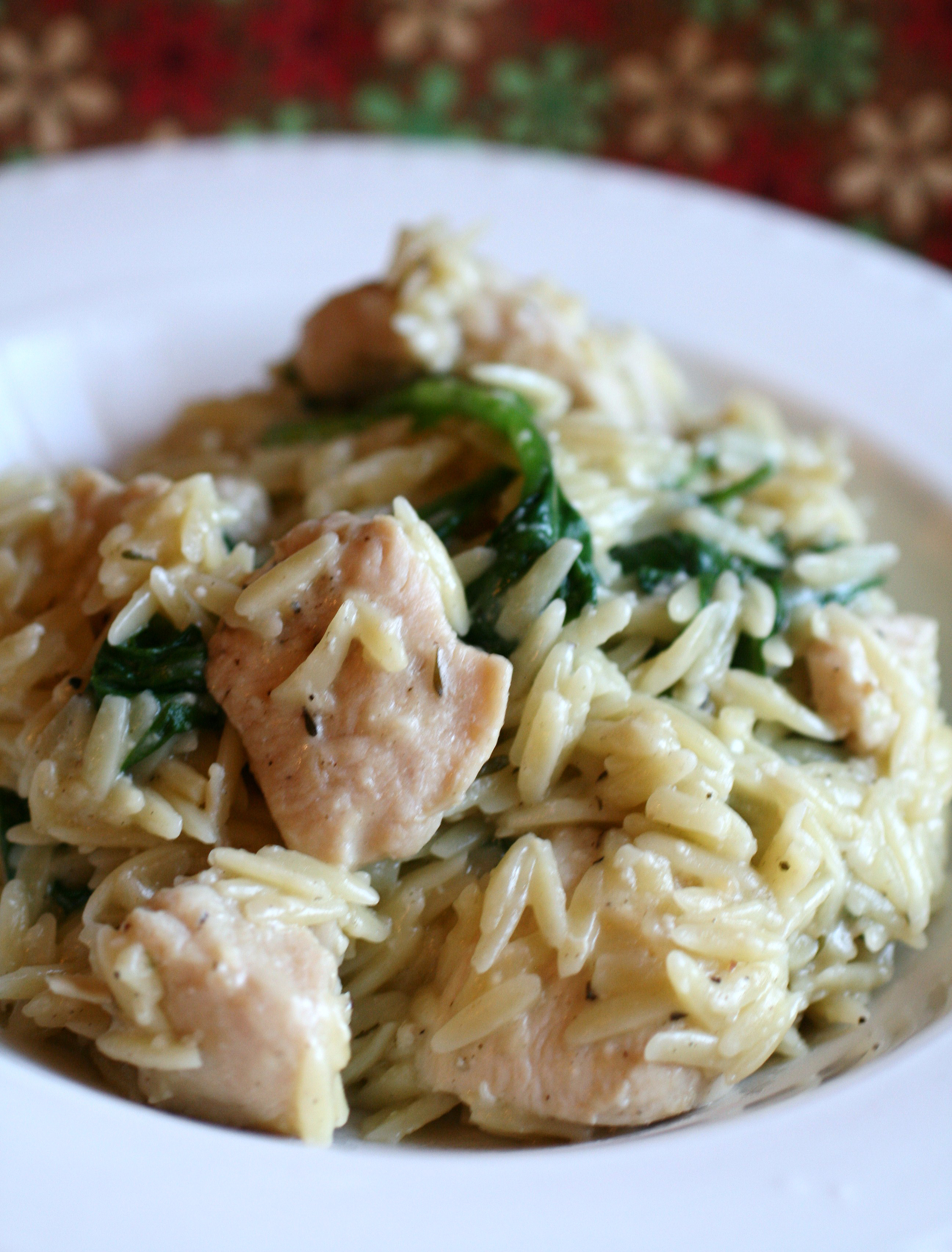 Garlic Chicken with Orzo Noodles VBRAUER671