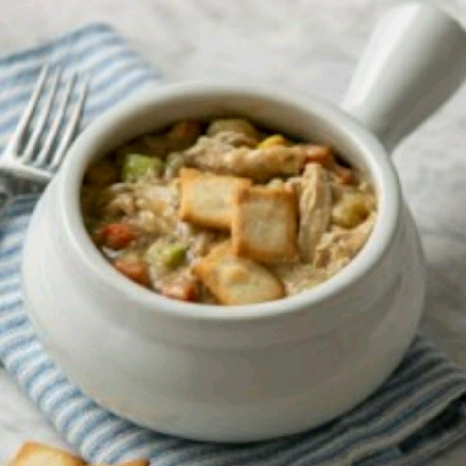 Easy Chicken and Vegetable Pot Pie HR Visser