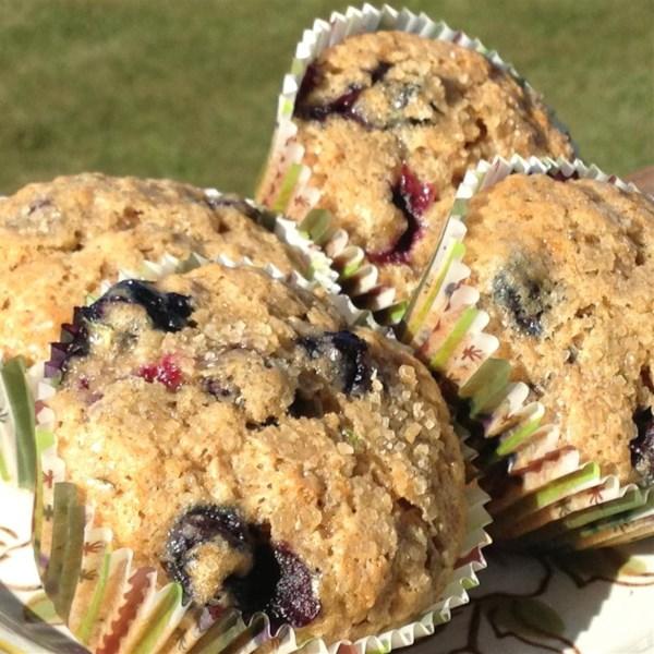 blueberry zucchini muffins photos