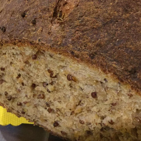 mustard wheat rye sandwich bread photos