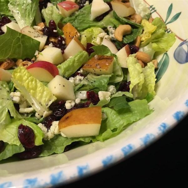 winter fruit salad with lemon poppyseed dressing photos