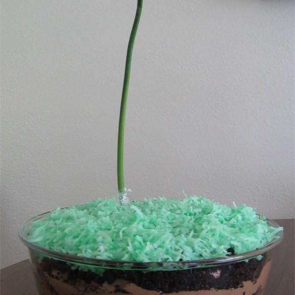 dirt cake ii photos