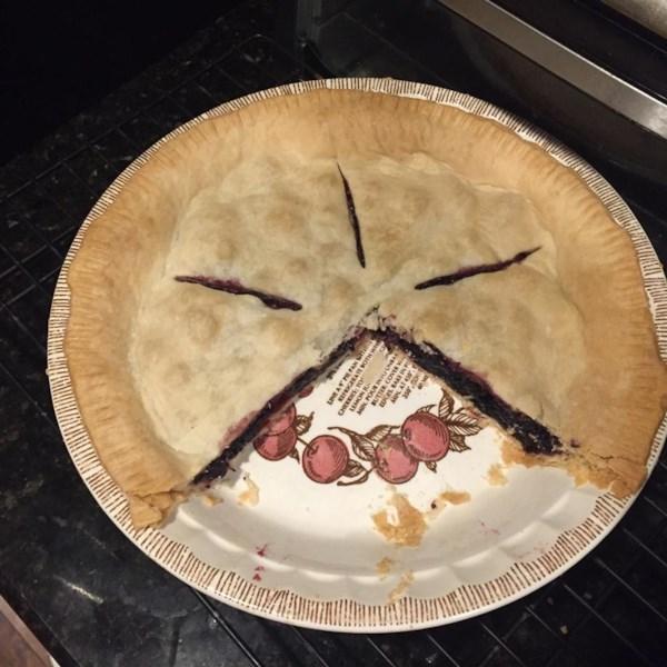 mulberry pie photos
