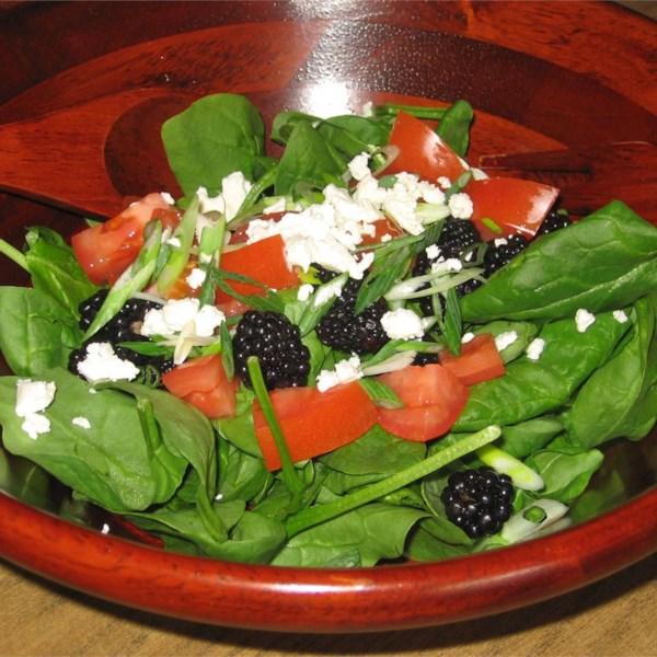 blackberry spinach salad photos
