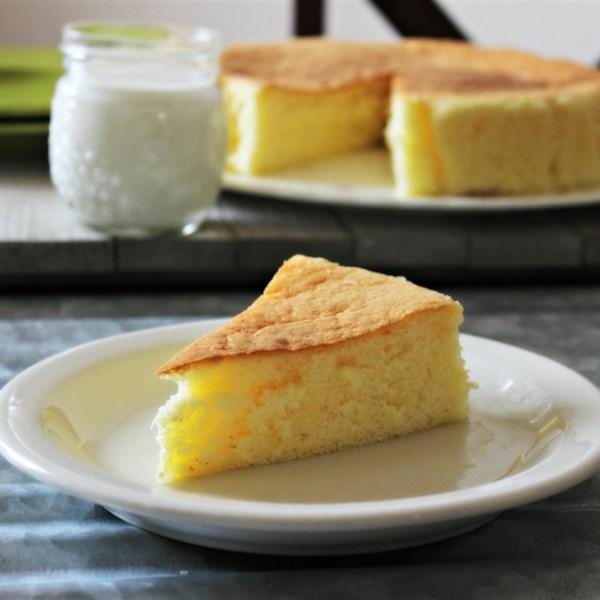 spongy japanese cheesecake photos