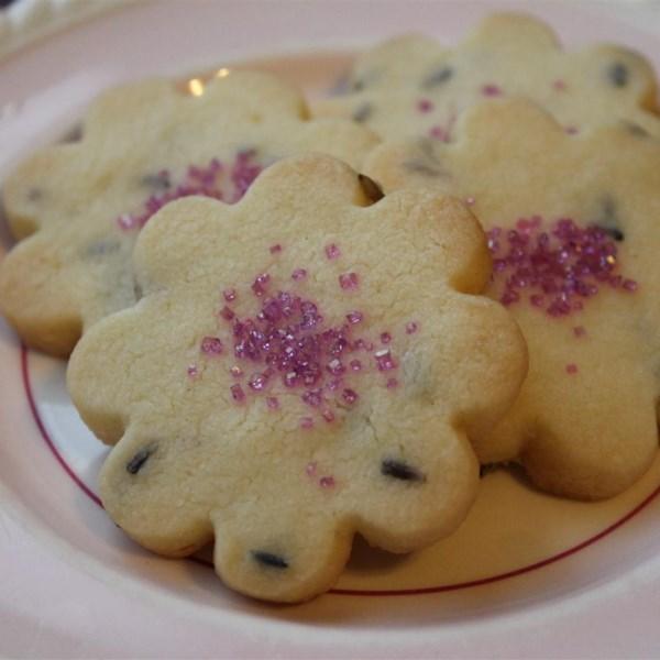 lavender shortbread cookies photos