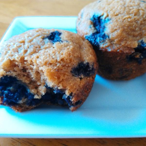 blueberry cornmeal muffins photos