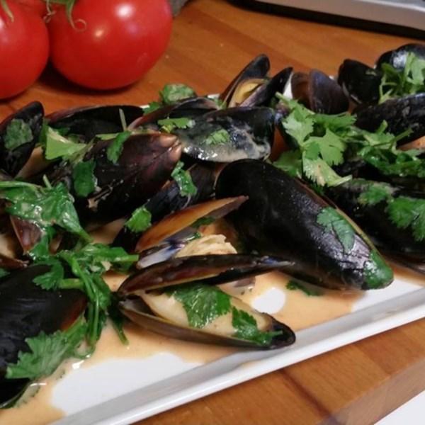 drunken mussels photos