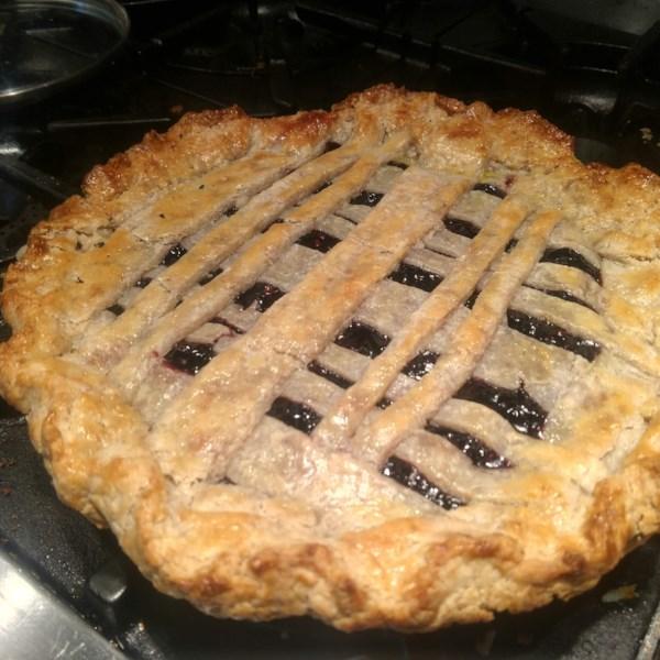 elderberry pie ii photos