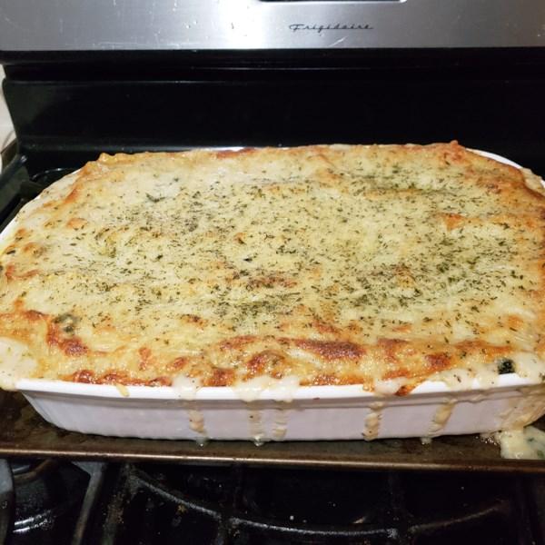 white cheese chicken lasagna photos
