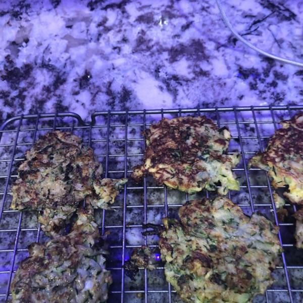 low carb zucchini pancakes photos