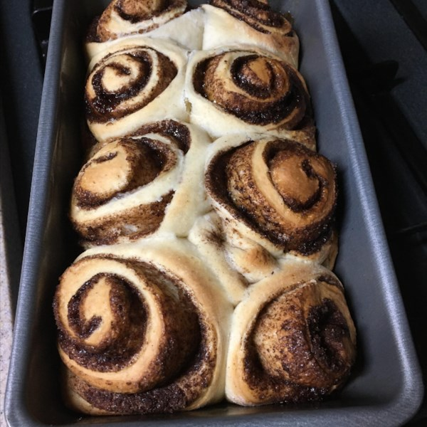 rorys guaranteed rise sourdough cinnamon rolls photos