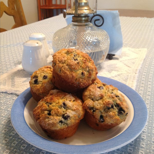 chef johns blueberry muffins photos