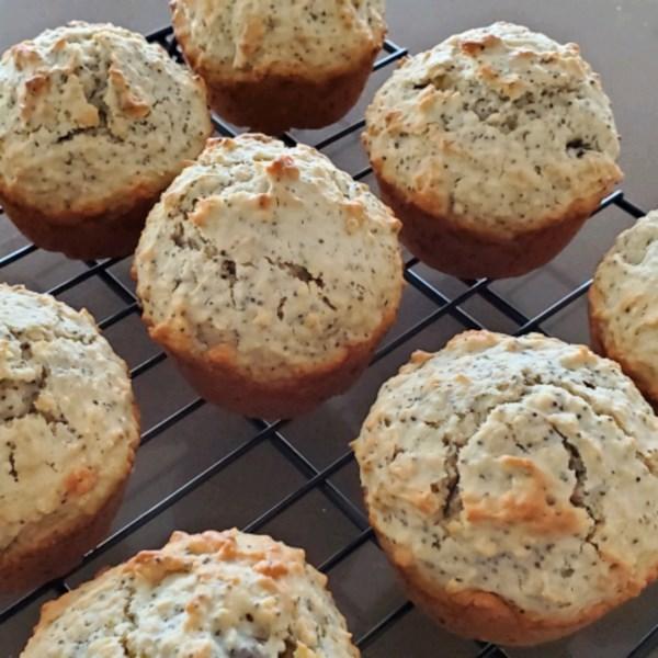 double oat raisin poppyseed muffins photos