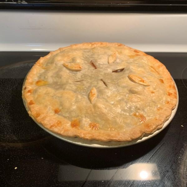 beef pot pie iii photos